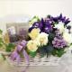 Lavender_Bliss
