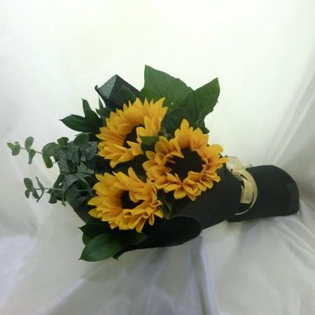 Sunflower HB (800x800)