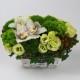 TA15203 - Green Beauty