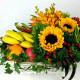 FB15801 - Brightly Cheery
