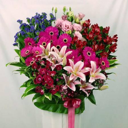 FS 15602 - Fusion Floral
